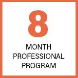 8 Months Professional Program