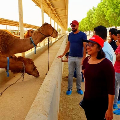 Understanding the Global Camel Milk Market – Postgraduate Students Visit Camelicious, UAE